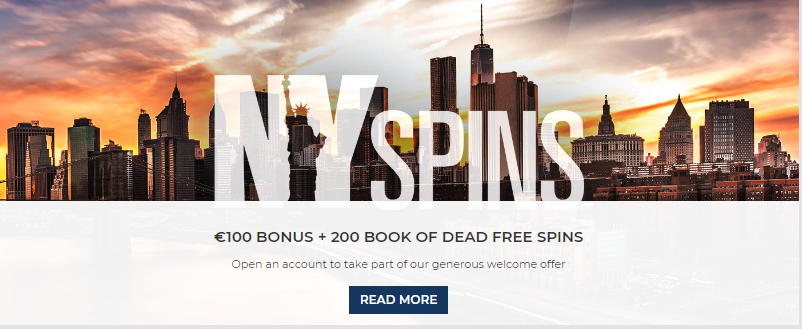 nyspins spins for free